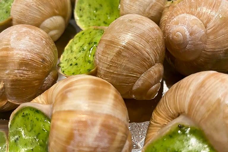 Les 12 escargots de Bourgogne en coquille au beurre de la maison Valentin 1200 x 800.jpg